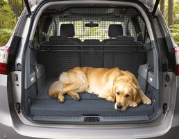 Extensão da Divisória para Bagageira/Cães