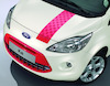 Decor Stripes for bonnet, roof and tailgate, Sunrise (red)