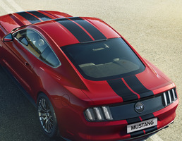 Racing Stripes over-the-top, gloss black