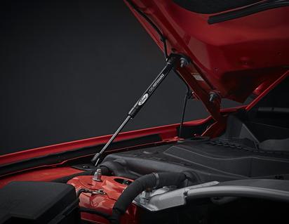 Kit ammortizzatori cofano con incisione laser del logo Ford Performance